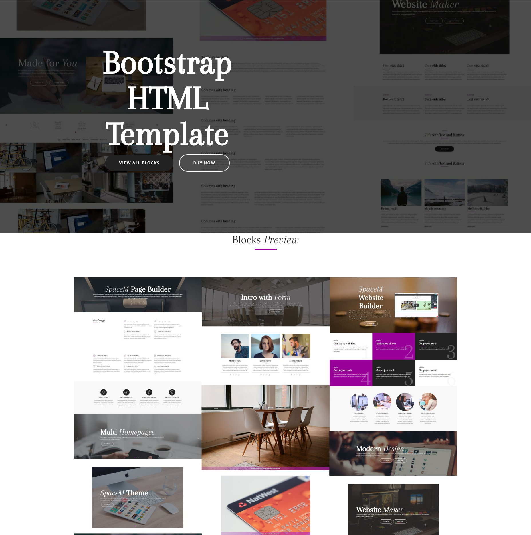 Free Bootstrap SpaceM Themes