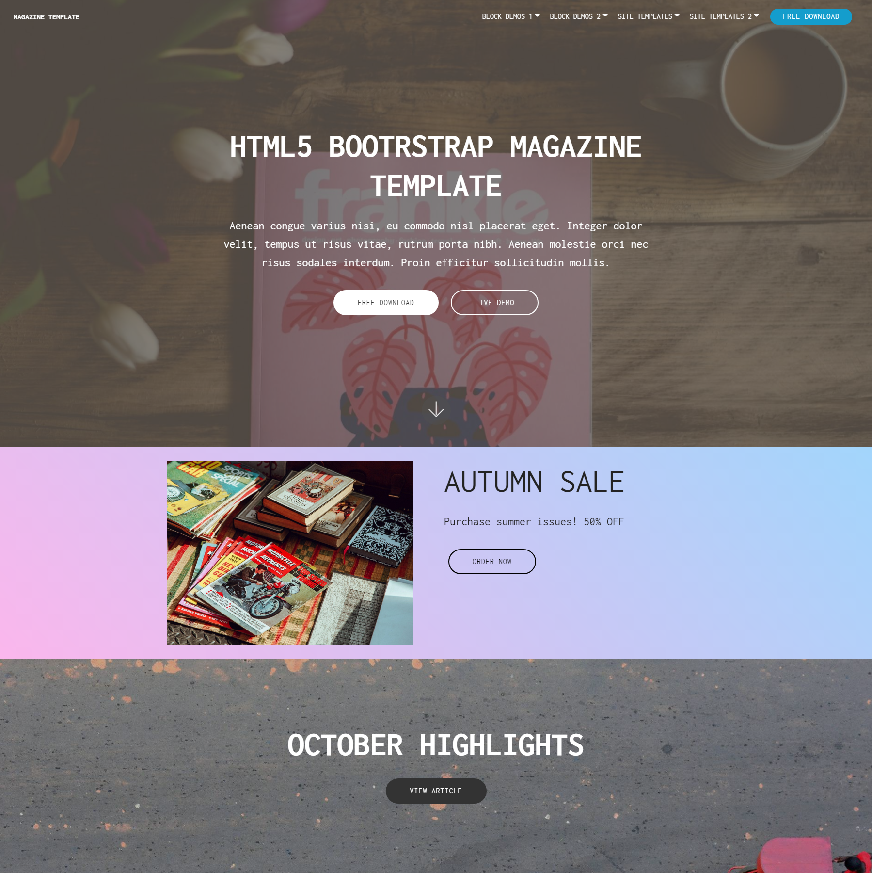 Free Bootstrap Magazine Themes