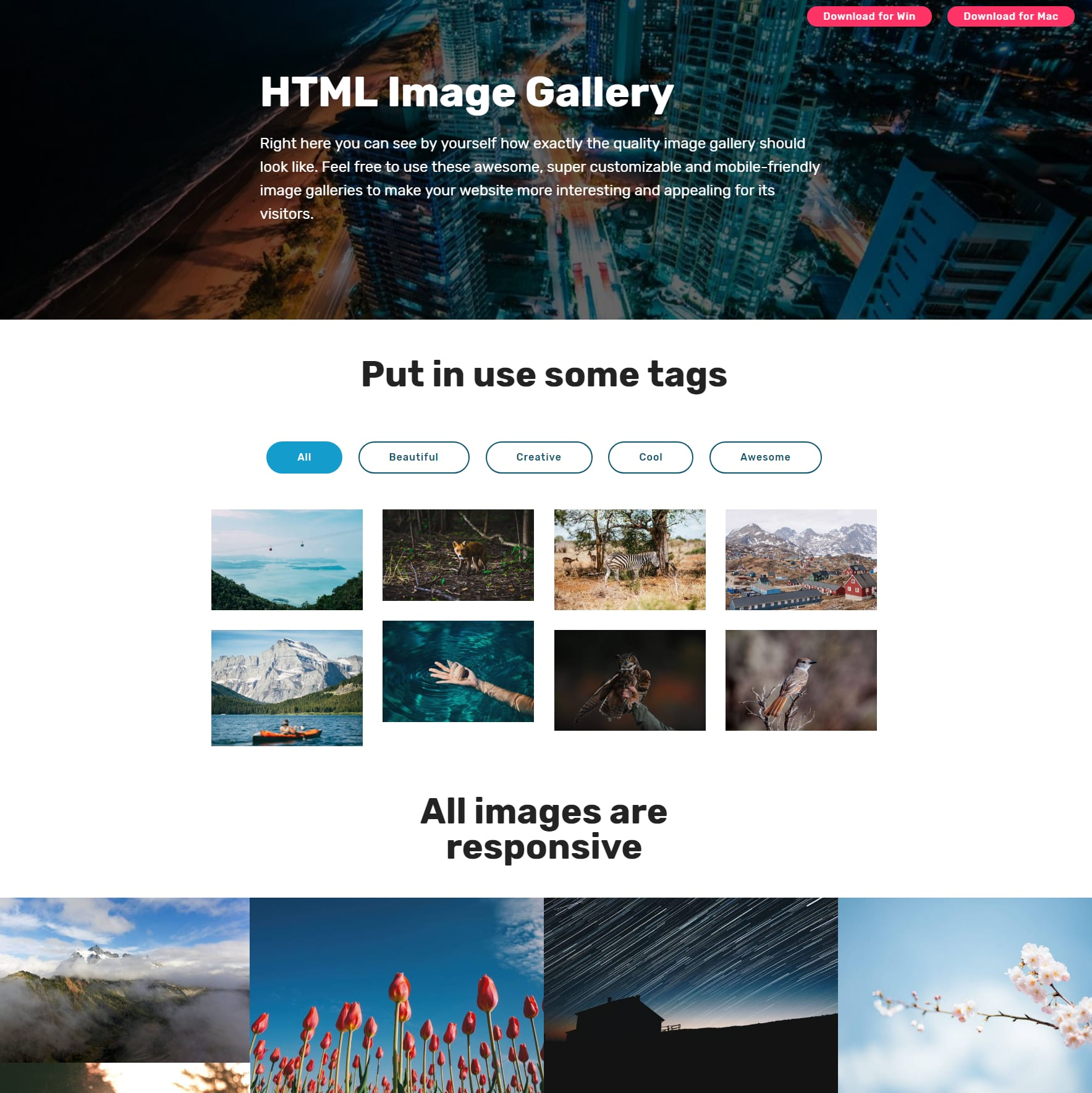 HTML5 Bootstrap Picture Gallery